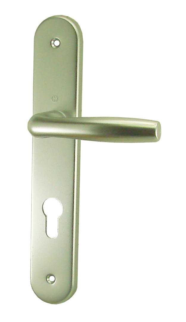 poign e de porte roissy cylindre alu champagne 195 mm doortools poign es de porte. Black Bedroom Furniture Sets. Home Design Ideas